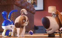 Тайная жизнь домашних животных 2 (2019)