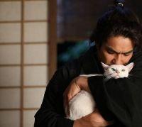 Самурай и кошка (2014)