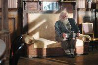 Дедушка моей мечты (2014)